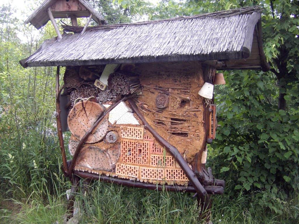 Nyt projekt skal give insekterne en hjælpende hånd