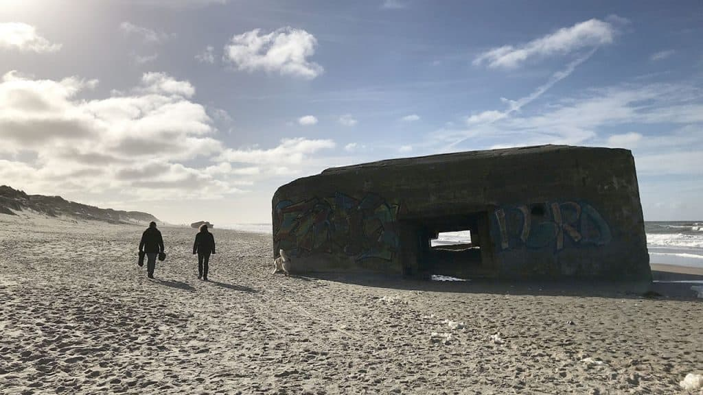 Ny direktør fundet til Danmarks største turismedestination