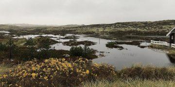 sommerhusområde i Bjerregård hvor grundvandet står højt