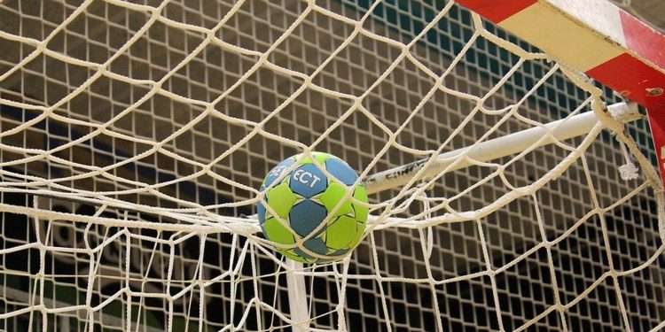 Håndbolden samler eksilvestjyder