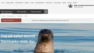 Naturstyrelsens nye Web-site guider dig til de naturlige oplevelser.