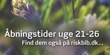 Ringkøbing Skjern kommunes biblioteker åbner snart
