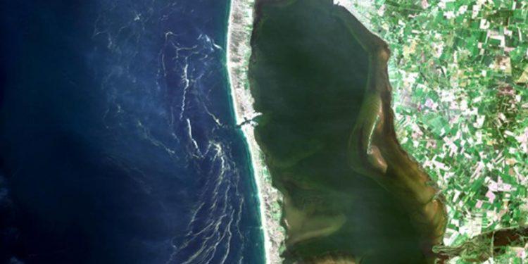 Dele af Vesterhavet også ud for Hvide Sande, er for tiden farvet rødt og kan lyse blåt om natten som morild.