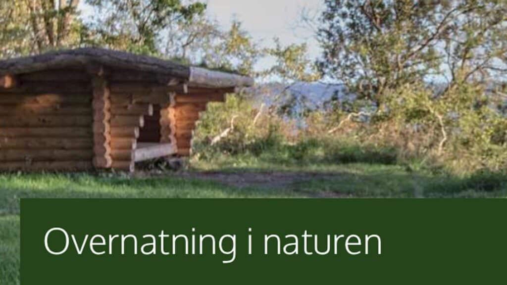 Vi er vilde med at sove i naturen