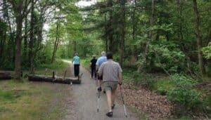 Træning i naturen for seniorer